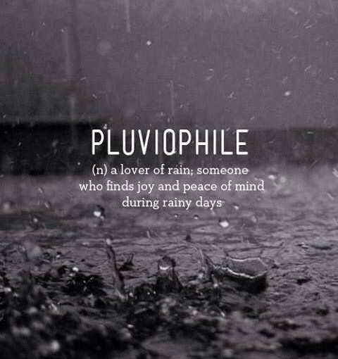 Rainy Day – It is a great day for pluviophiles.