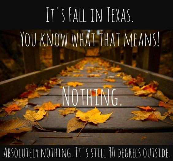 fall-in-texas-2